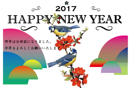2017newyear